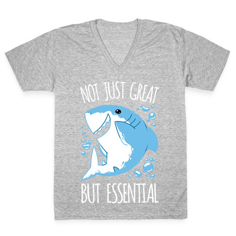Not Just Great, But Essential V-Neck Tee Shirt