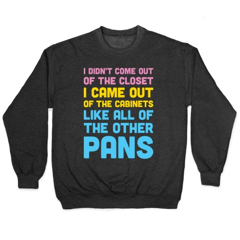 I Didn't Come Out Of The Closet (Pansexual) Pullover