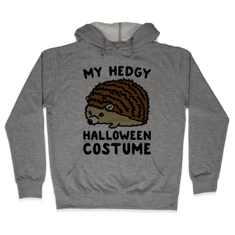 My Hedgy Halloween Costume Hedgehog  Hooded Sweatshirt