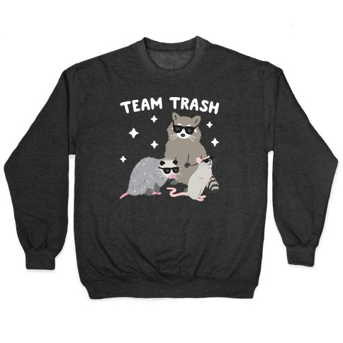 Team Trash Opossum Raccoon Rat Pullover