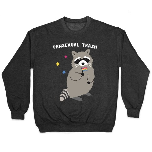 Pansexual Trash Raccoon Pullover