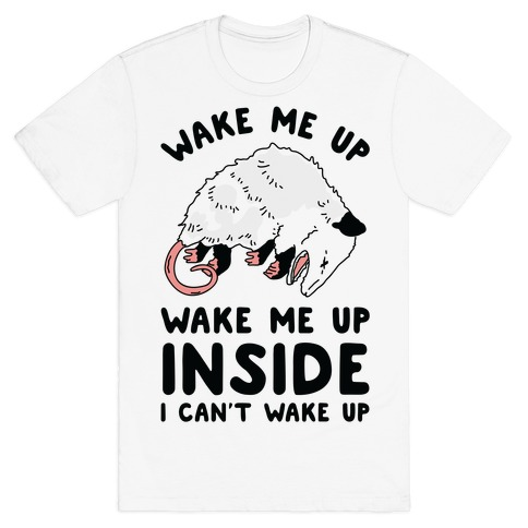 Wake Me Up Wake Me Up Inside I Can't Wake Up Opossum T-Shirt