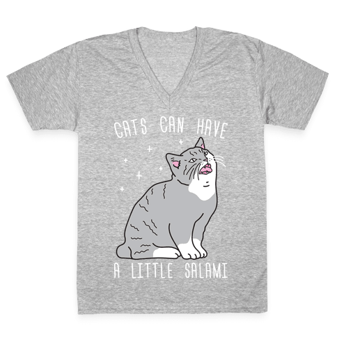 Cats Can Have A Little Salami V-Neck Tee Shirt