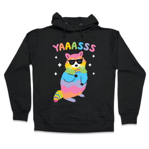 Yas Rainbow Raccoon Hooded Sweatshirt