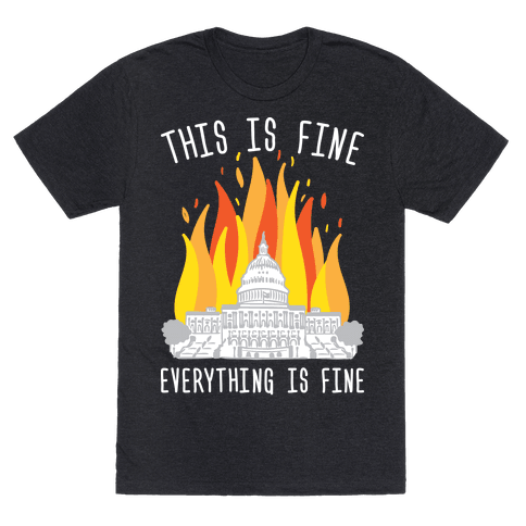 This Is Fine Everything Is Fine U.S. Capitol