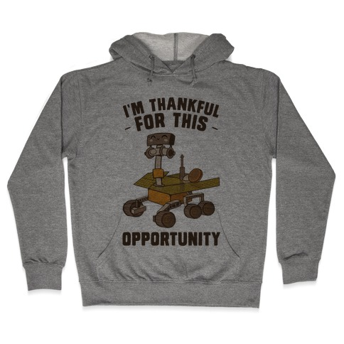 I'm Thankful For this OPPORTUNITY! Hooded Sweatshirt