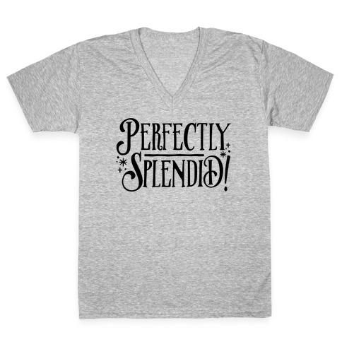 Perfectly Splendid V-Neck Tee Shirt