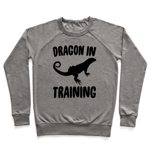 Dragon In Training  Pullover