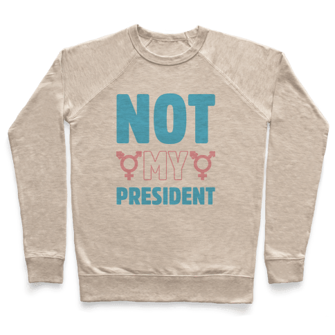 Not My President Trans Rights Pullover