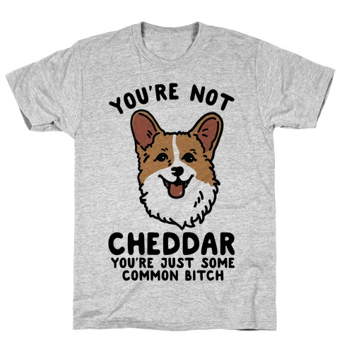 You're Not Cheddar You're Just Some Common Bitch T-Shirt