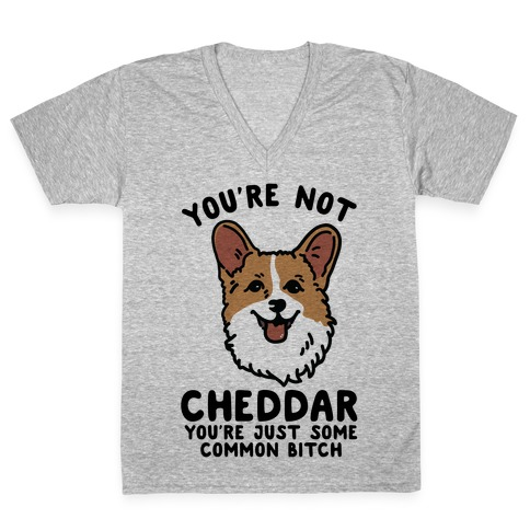 You're Not Cheddar You're Just Some Common Bitch V-Neck Tee Shirt