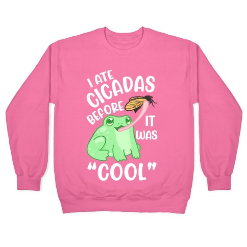 """I Ate Cicadas Before It Was """"Cool"""" Pullover"""