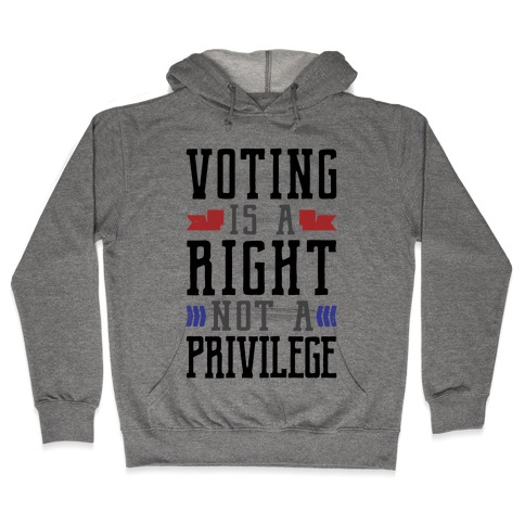 Voting Is A Right Not A Privilege Hooded Sweatshirt