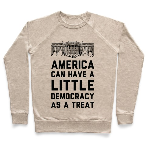 America Can Have a Little Democracy As a Treat White House Pullover