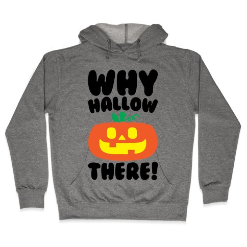 Why Hallow There Hooded Sweatshirt