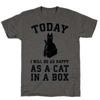 Today I Will Be As Happy As A Cat In A Box