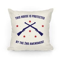 This House Is Protected By The Second Amendment