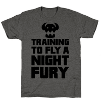 Training To Fly A Nightfury