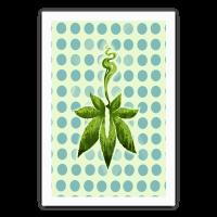 Green Leaf - Cannabis