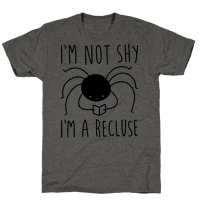 I'm Not Shy I'm A Recluse