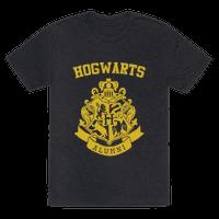 Hogwarts Alumni (Hufflepuff)