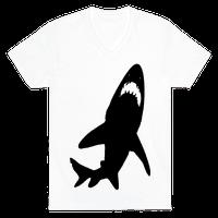 Stalking Shark