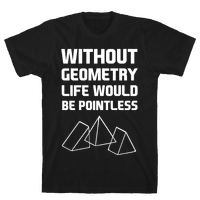 Without Geometry Life Would Be Pointless