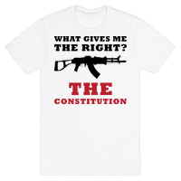 The Constitution (Gun Love)