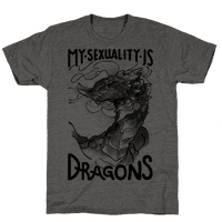 My Sexuality Is Dragons