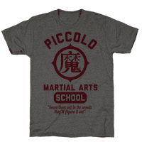 Piccolo Martial Arts School