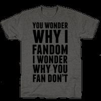 You Wonder Why I Fandom