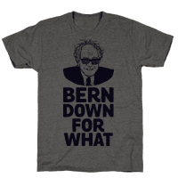 Bern Down For What