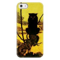 Black Cat Case