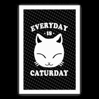 Everyday Is Caturday