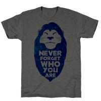 Never Forget Who You Are(Mufasa)