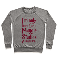 I'm Only Here For A Muggle Studies Assignment