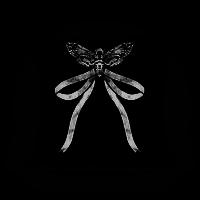 Moth Bow Pillow