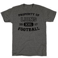 Property of Lions Football test