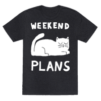 Weekend Plans Cat